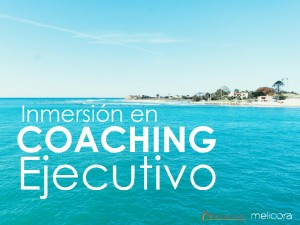 thumbnail-of-Conferencia_SunParty_Coaching_3_6_2015