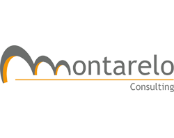 Montarelo Consulting